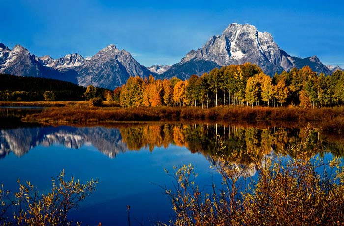 Oxbow Bend in the Morning at Grand Teton National Park